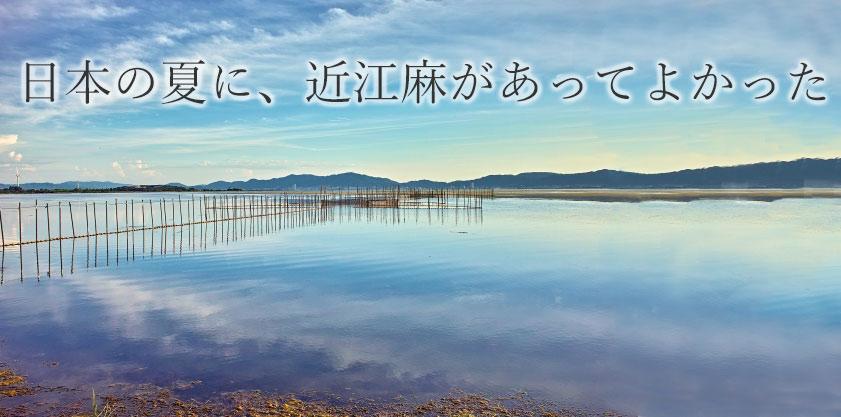 日本の夏に近江麻があってよかった